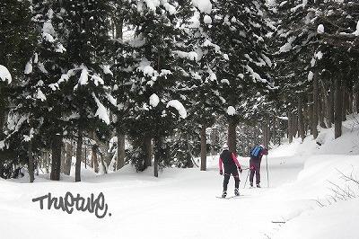 雪道散歩400