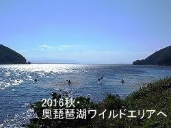 250奥琵琶湖ワイルドエリア