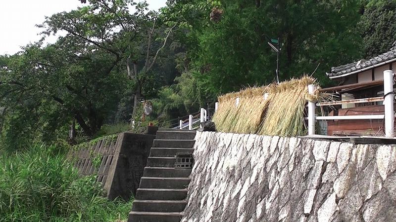 18.琵琶湖カヤッククルーズ
