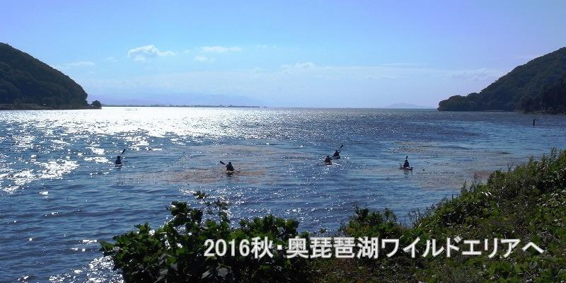 2016秋・奥琵琶湖ワイルドエリアへ